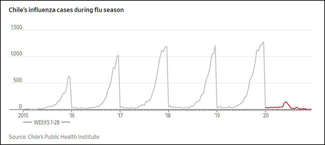 Chile's influenza cases during flu season