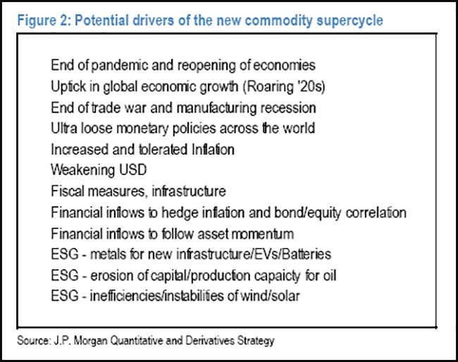 Potential drivers of the new commodity supercycle